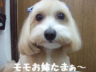 2008_08260074.jpg