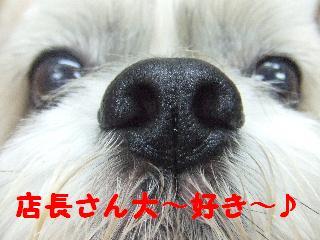 2008_09060027.jpg
