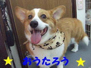 2008_09130023.jpg