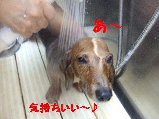 2008_09130037.jpg