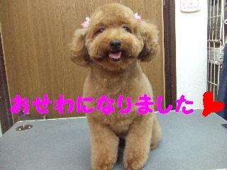 2008_09130051.jpg
