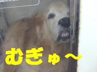 2008_09230018.jpg