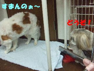 2008_09230024.jpg