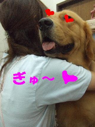 2008_09230036.jpg