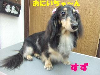 2008_09270021.jpg