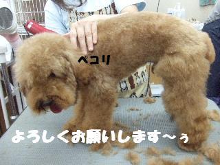 2008_10070008.jpg