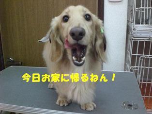 CIMG6114.jpg