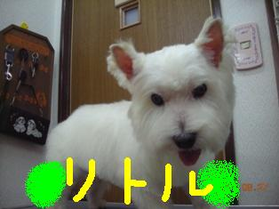 DSCN3269.jpg