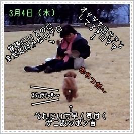 2008-03-04_01.jpg