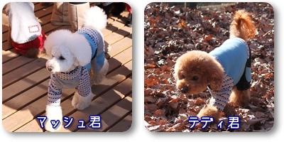 2010-01-29_02.jpg