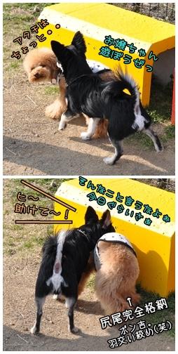 2010-03-24_02.jpg