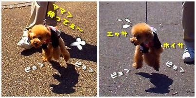 2010-03-29_01.jpg