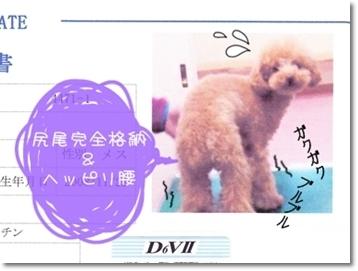 2010-04-21_01_0003.jpg