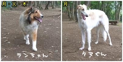 2010_05_31_01.jpg