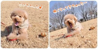 2011-02-22_02.jpg