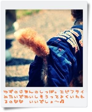 DSC_1638-002.jpg