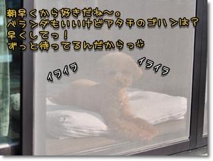 DSC_2644.jpg