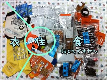 IMG_0612_20101115111413.jpg