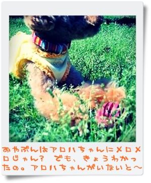 PICT0002-001.jpg