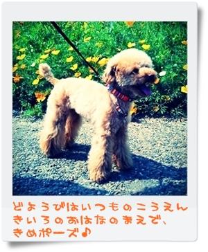 PICT0008-001.jpg