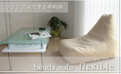 flexible_convert_20100515030220.jpg