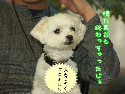 PICT0177_s.jpg