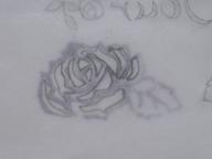 バラの多色刷り 002 blog30