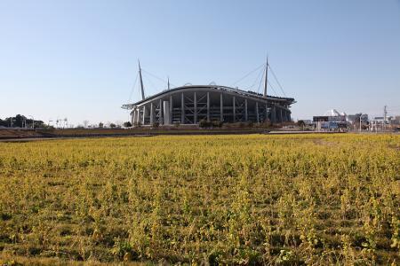 豊田スタジアムの菜の花