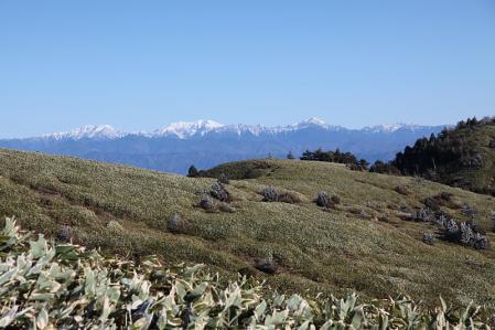 稜線に出ると南アルプスが見えてきた