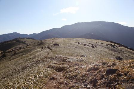 輝く笹原と恵那山