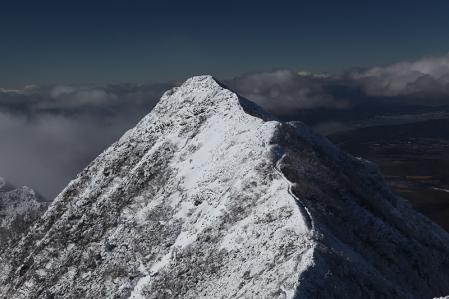 権現岳からギボシを望む