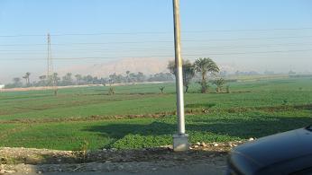 egipt38.jpg