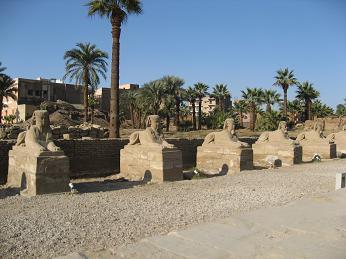 egipt86.jpg