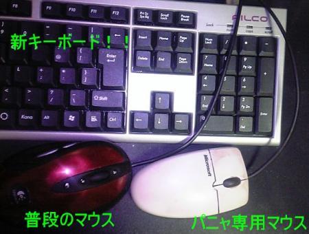 2006042503.jpg