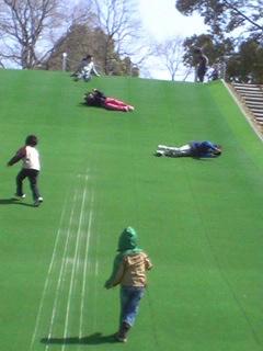 堀内公園の芝生