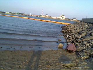 亀崎 海岸