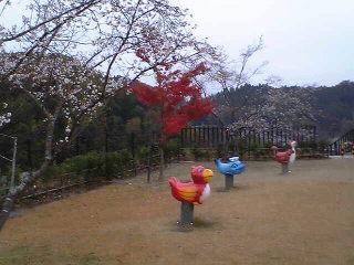 20061124123333.jpg