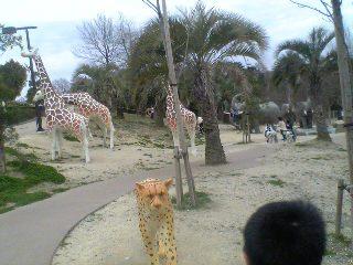 モリコロパーク内 動物遊具