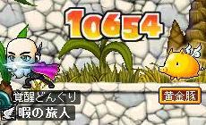 10000超え!