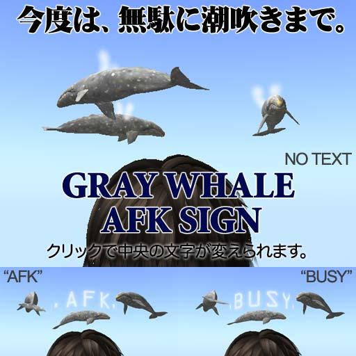 Gray-AFK.jpg