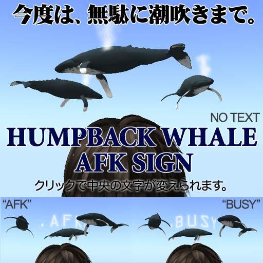 Humpback-AFK.jpg
