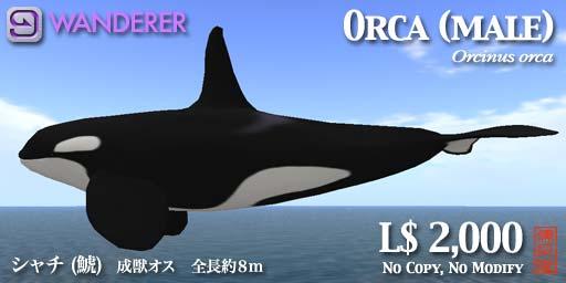 orcapop_m.jpg