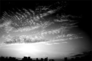 daiba4.jpg