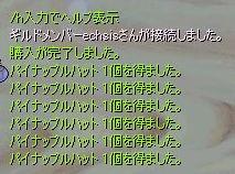 ぱぃなぽーがいっぱい…