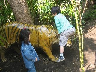 トラと格闘する息子