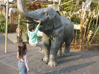 象にぶら下がる息子