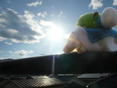 太陽のエネルギーってすごいよねぇ