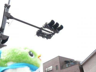 これがLED式信号機だよ。