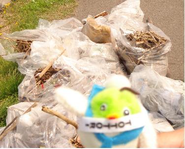 拾ったゴミはたっくさんでした。