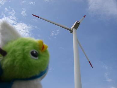 風力発電の見学にも行ったなぁ。
